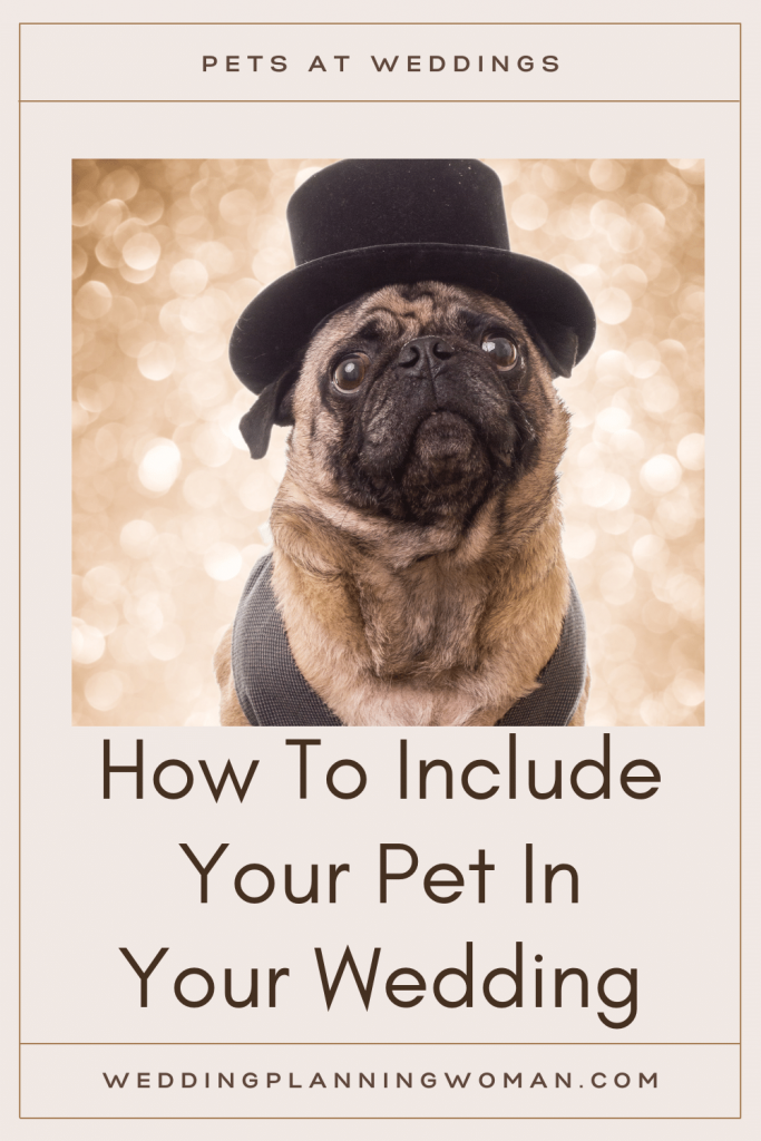 Pets at weddings: How to include your pet in your wedding